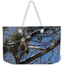 Bald Eagle Watching Her Domain Weekender Tote Bag