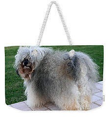 Weekender Tote Bag featuring the photograph ball of fur Havanese dog by Sally Weigand
