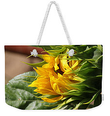 Weekender Tote Bag featuring the photograph Ball Of Sun by Katie Wing Vigil
