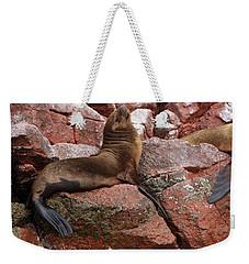 Weekender Tote Bag featuring the photograph Ballestas Island Fur Seals by Aidan Moran