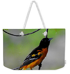 Weekender Tote Bag featuring the photograph Baltimore Oriole by Betty-Anne McDonald