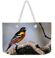 Baltimore Oriole Weekender Tote Bag by Christina Rollo