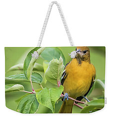 Baltimore Oriole Closeup Weekender Tote Bag