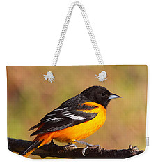 Baltimore Oriole IIi Weekender Tote Bag