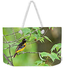 Baltimore Oriole Weekender Tote Bag by Michael Peychich