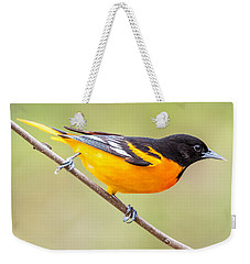 Baltimore Oriole Weekender Tote Bag by Paul Freidlund