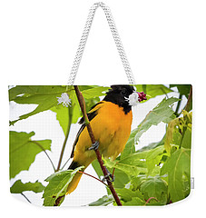 Weekender Tote Bag featuring the photograph Baltimore Oriole With Raspberry  by Ricky L Jones