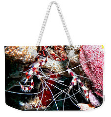 Banded Coral Shrimp - Caught In The Act Weekender Tote Bag