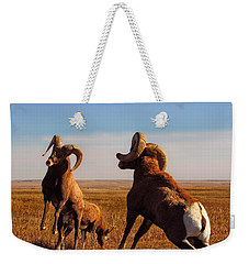 Bang Of The Bighorn Weekender Tote Bag