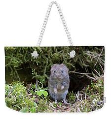 Weekender Tote Bag featuring the photograph Bank Vole - Scottish Highlands by Karen Van Der Zijden