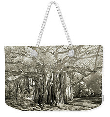 Banyan Strangler Fig Tree Weekender Tote Bag