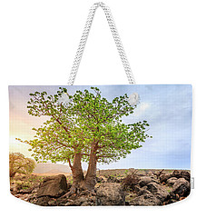 Weekender Tote Bag featuring the photograph Baobab Tree by Alexey Stiop