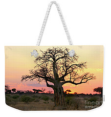 Baobab Tree At Sunset  Weekender Tote Bag