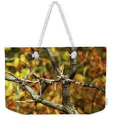 Bare Sumac Tree Weekender Tote Bag by Jimmy Ostgard