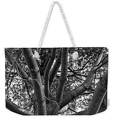 Bare Tree Weekender Tote Bag
