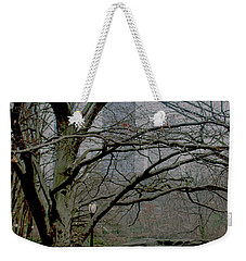 Weekender Tote Bag featuring the photograph Bare Tree On Walking Path by Sandy Moulder