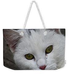 Barn Cat Weekender Tote Bag