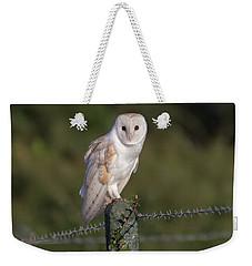 Barn Owl On Ivy Post Weekender Tote Bag
