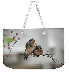 Barn Swallow Fledglings Weekender Tote Bag