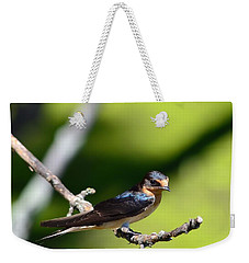 Barn Swallow Weekender Tote Bag by Kathy Eickenberg