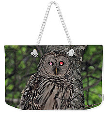 Weekender Tote Bag featuring the photograph Barred Owl 3 by Glenn Gordon