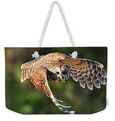 Barred Owl Flying Toward You Weekender Tote Bag