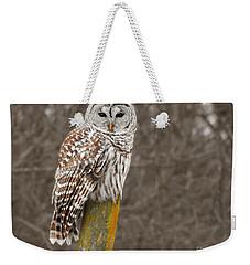 Barred Owl Weekender Tote Bag by Kathy M Krause