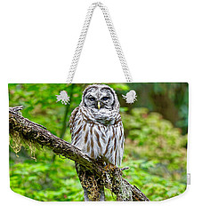 Barred Owl Weekender Tote Bag by Michael Cinnamond