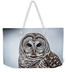 Weekender Tote Bag featuring the photograph Barred Owl by Paul Freidlund
