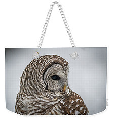 Weekender Tote Bag featuring the photograph Barred Owl Portrait by Paul Freidlund