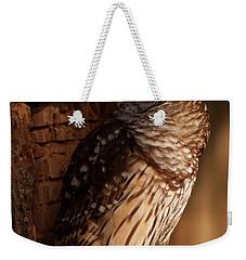 Weekender Tote Bag featuring the digital art Barred Owl Sleeping In A Tree by Chris Flees