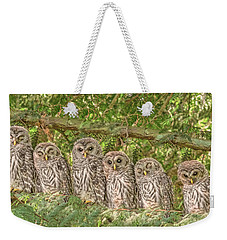Barred Owlets Nursery Weekender Tote Bag