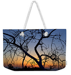 Weekender Tote Bag featuring the photograph Barren Tree At Sunset by Lori Seaman
