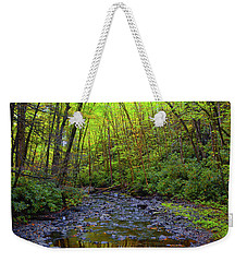 Weekender Tote Bag featuring the photograph Base Of Dingmans Fall by Raymond Salani III