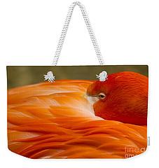 Bashful Flamingo Weekender Tote Bag