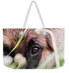 Bashful Weekender Tote Bag by Stephanie Frey