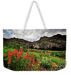 Basin Brushes Weekender Tote Bag
