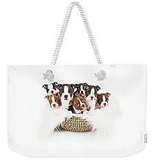 Basket Of Boston Terrier Puppies Weekender Tote Bag