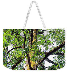 Weekender Tote Bag featuring the photograph Basking In The Light Of The Lord by Tikvah's Hope