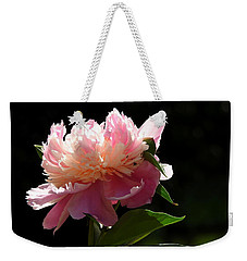 Weekender Tote Bag featuring the photograph Basking In The Sun by Betty-Anne McDonald