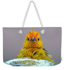 Weekender Tote Bag featuring the photograph Bath Time Finch by Lori Seaman