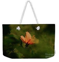 Weekender Tote Bag featuring the photograph Bathed In Light by Debby Pueschel