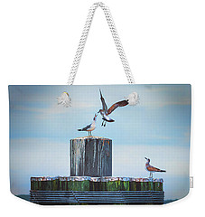Battle Of The Gulls Weekender Tote Bag