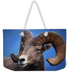 Battle Worn Bighorn Sheep Weekender Tote Bag