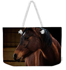Bay Arabian Mare 2 Weekender Tote Bag