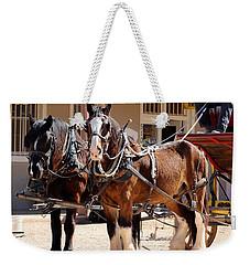 Bay Colored Clydesdale Horses Weekender Tote Bag