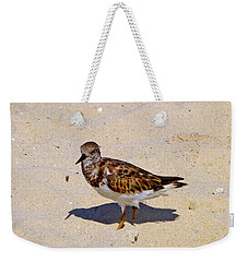 Weekender Tote Bag featuring the photograph Beach Bird by Francesca Mackenney