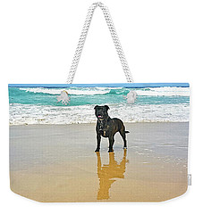 Weekender Tote Bag featuring the photograph Beach Dog And Reflection By Kaye Menner by Kaye Menner