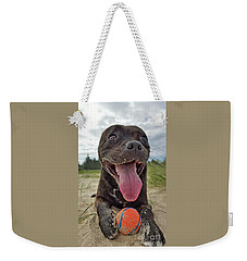 Weekender Tote Bag featuring the photograph Beach Dog - More Play? By Kaye Menner by Kaye Menner