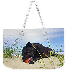 Weekender Tote Bag featuring the photograph Beach Dog - Rest Time By Kaye Menner by Kaye Menner